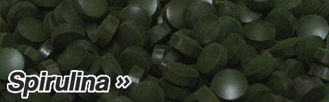 Spirulina - Nature's multivitamin: the most concentrated and nutritious whole food known to science.