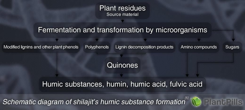 PlantPills Gold Standard Shilajit Paste Formation